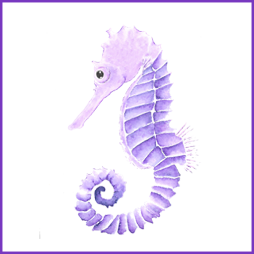 So What's with the Seahorse Anyways?
