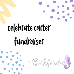 celebrate carter fundraiser