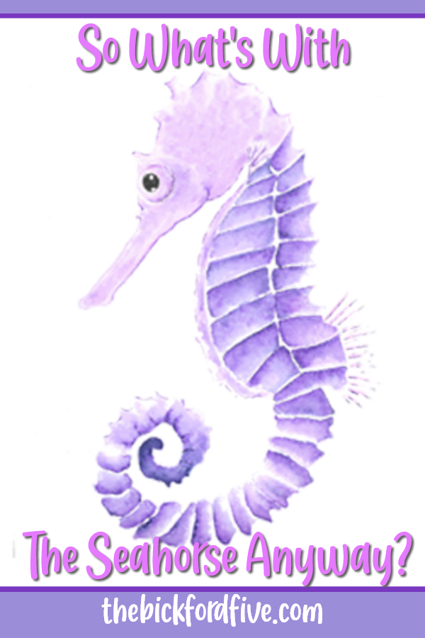 So, What's With the Seahorse Anyway?